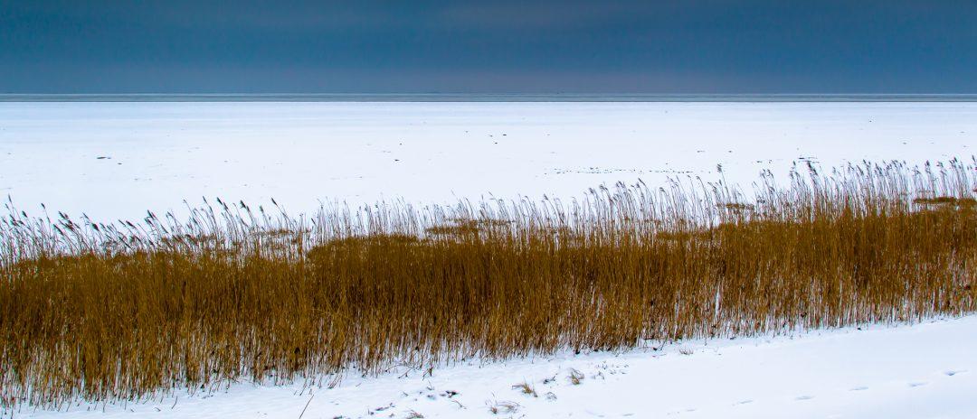 Het bevroren wad bij Balgzand bij eb.